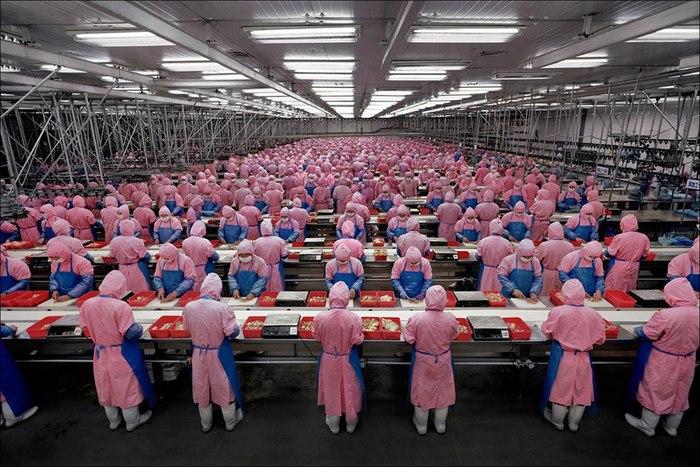 ведущие отрасли промышленности в Китае